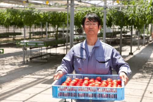 信州トマト工房がこだわる農法について