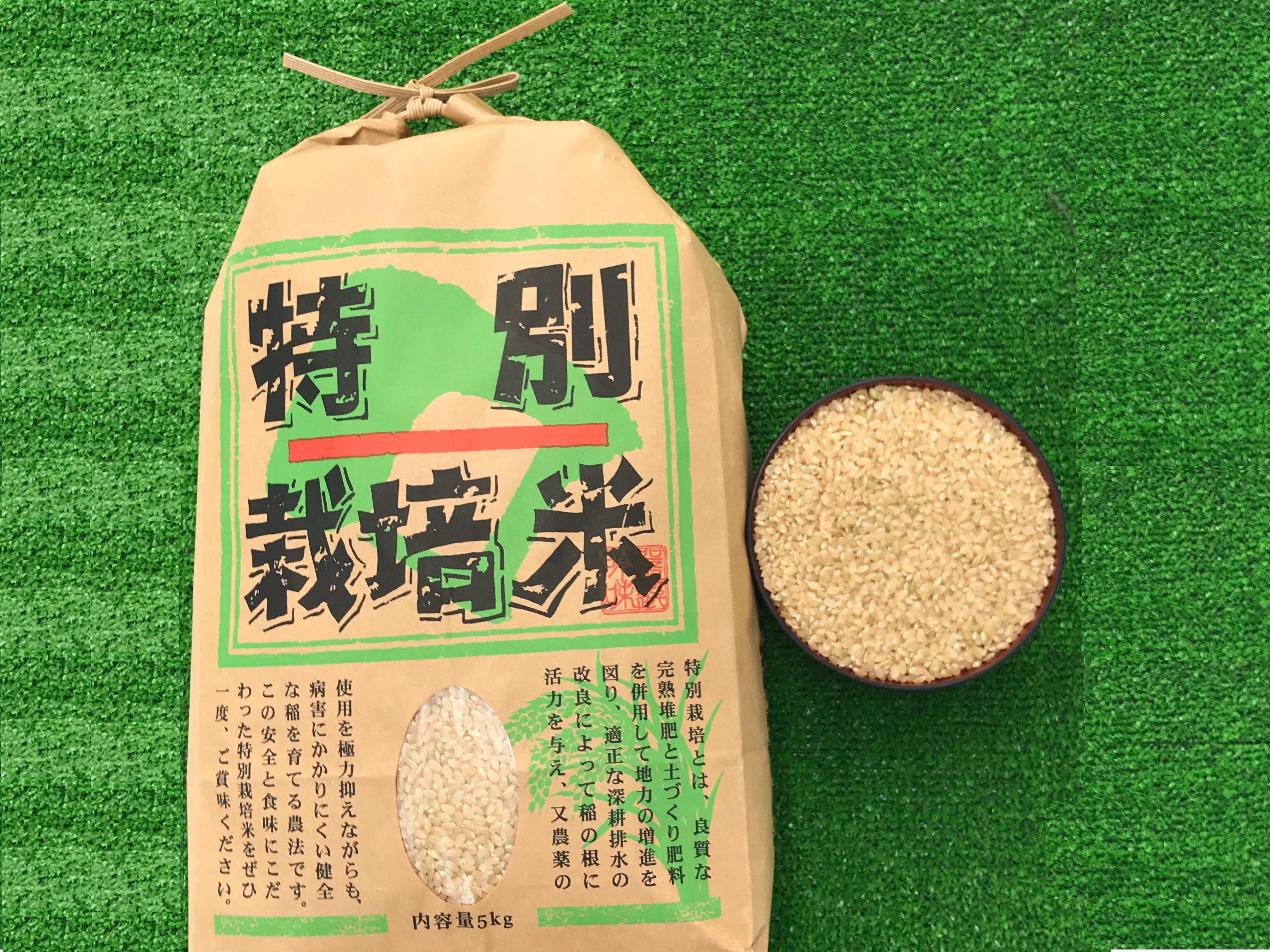 「特別栽培」コシヒカリ玄米