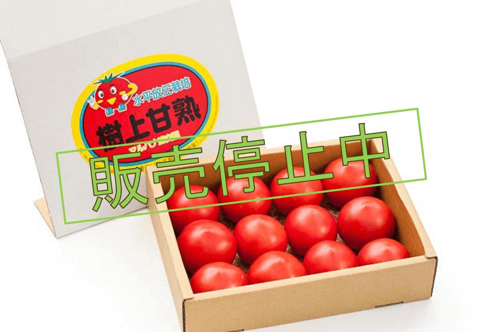 樹上甘熟トマト
