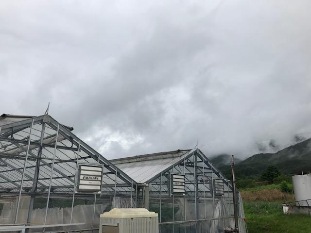 台風19号の被害に遭われた農家のみなさなに